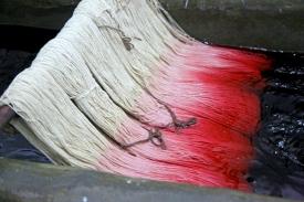 Vorsichtig wird die Baumwolle mit Untoxischen Farben gefärbt